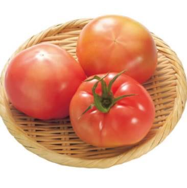 トマトのサンプル画像