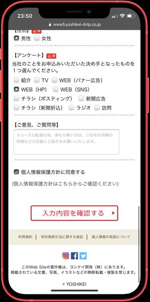 「入力内容を確認する」のボタン