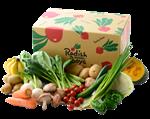 野菜・果物コース